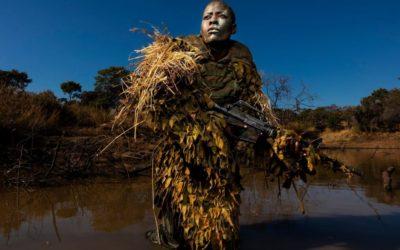 Les Akashinga : dernier rempart face à l'extinction des éléphants au Zimbabwe ?